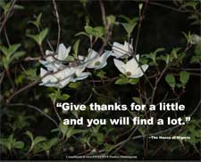 give-thanks-for-a-little